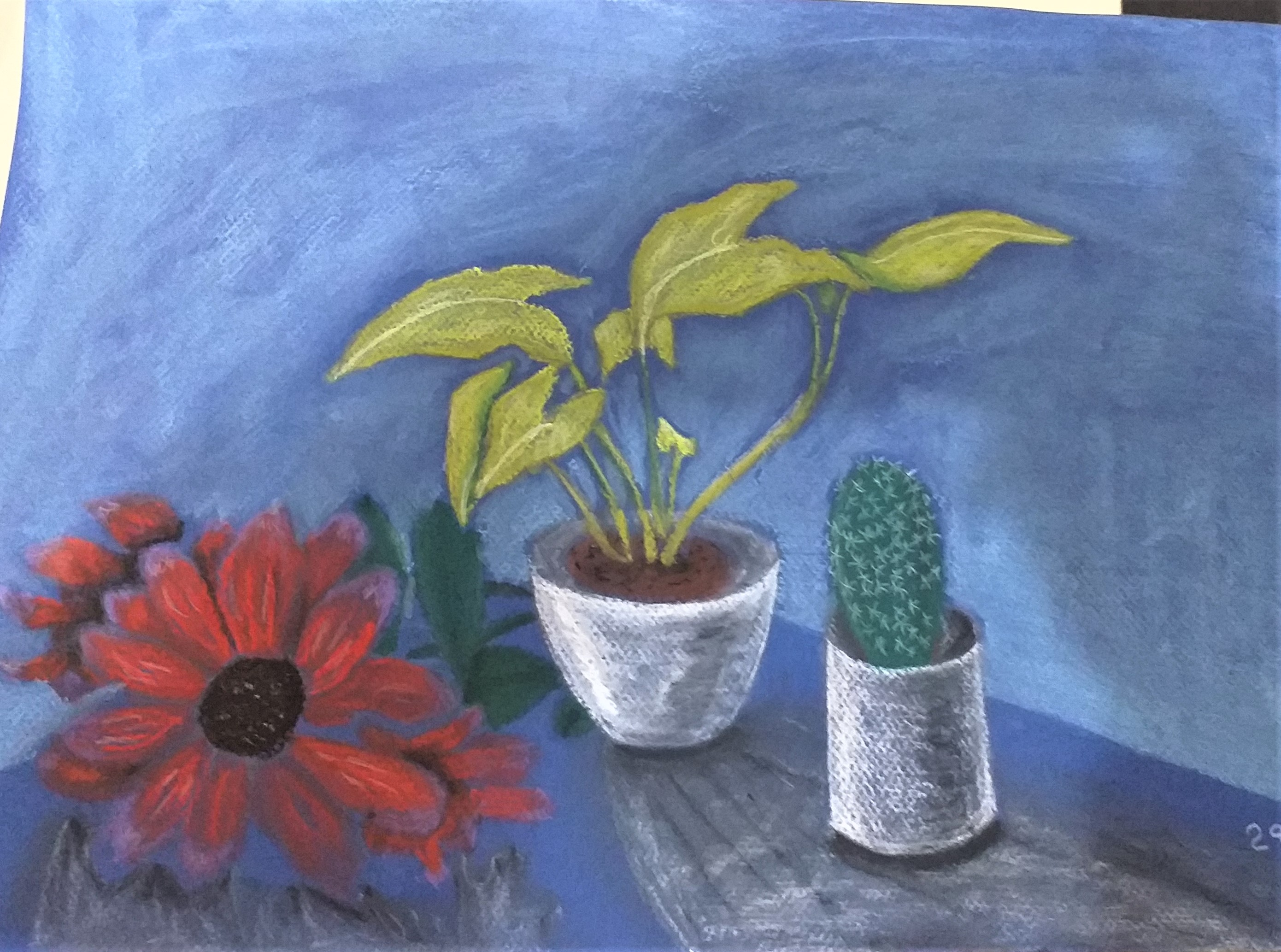 Luke's pastel drawing of a still life. Art course in Kidderminster Worcestershire.
