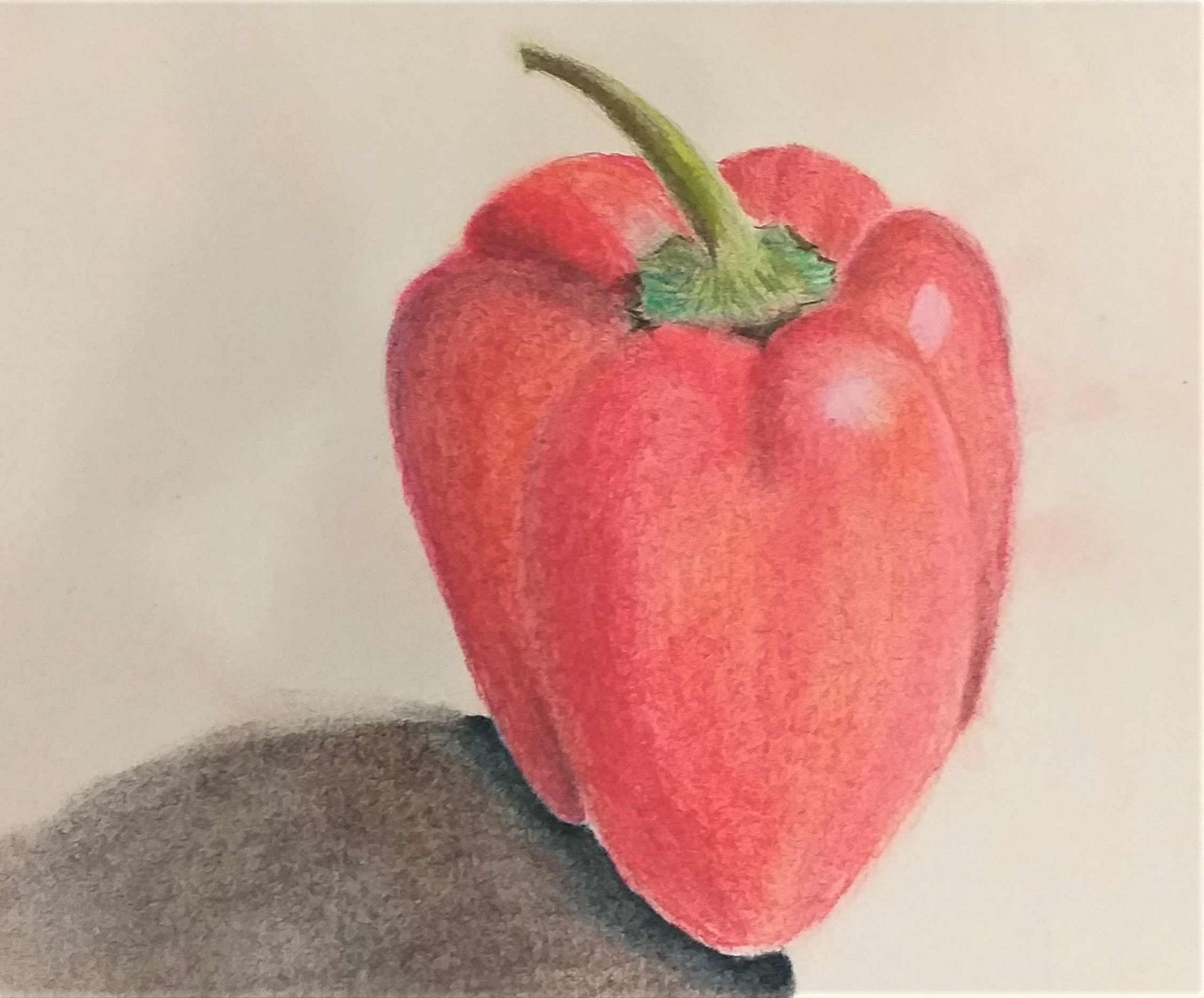Pastel drawing created at Art Classes in Kidderminster Worcestershire