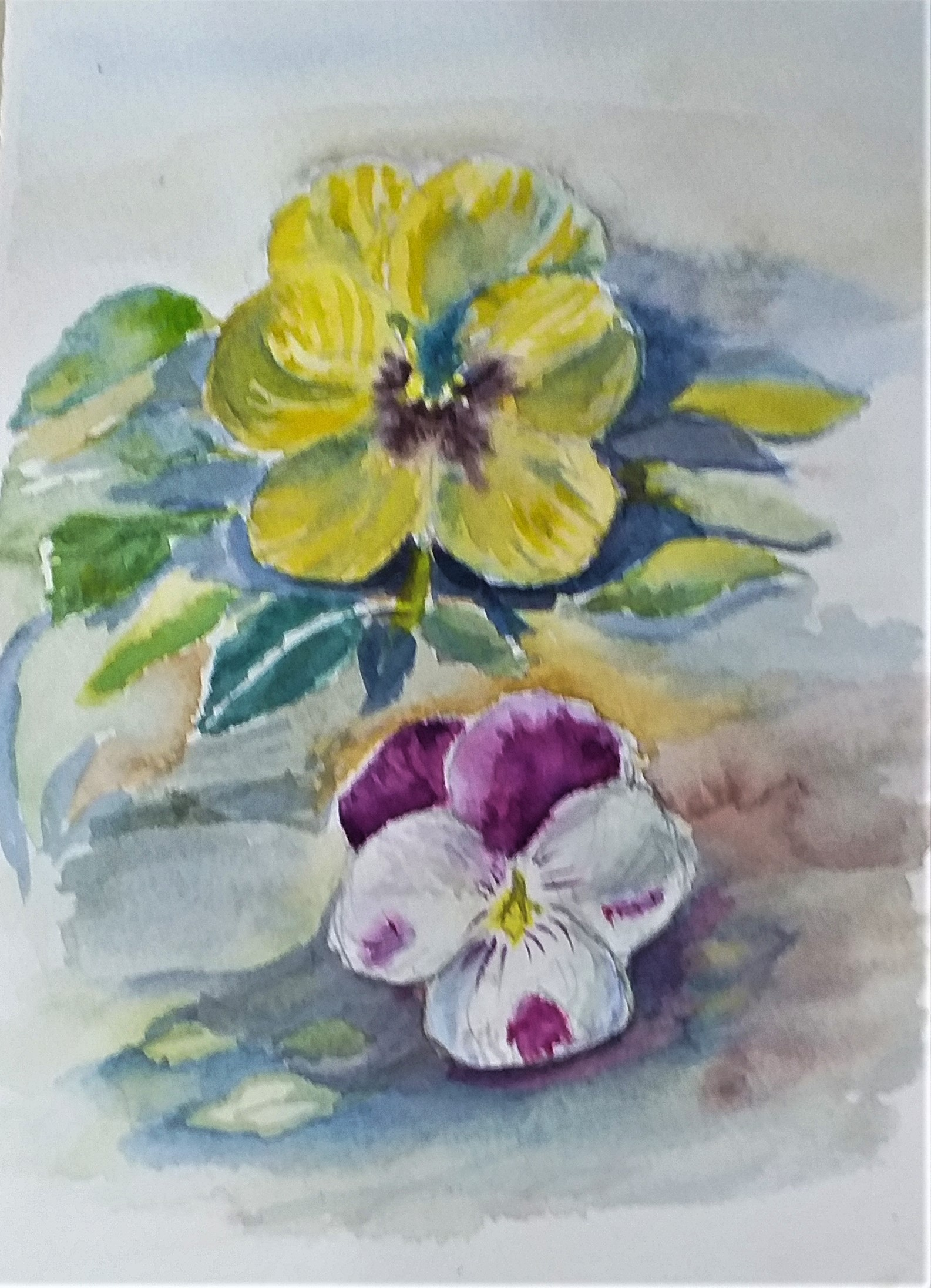 Dana's study of pansies in watercolour created at watercolour art course in Worcestershire.