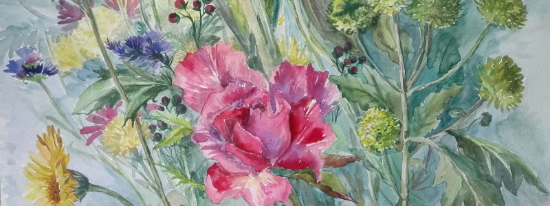Watercolour with rose small size