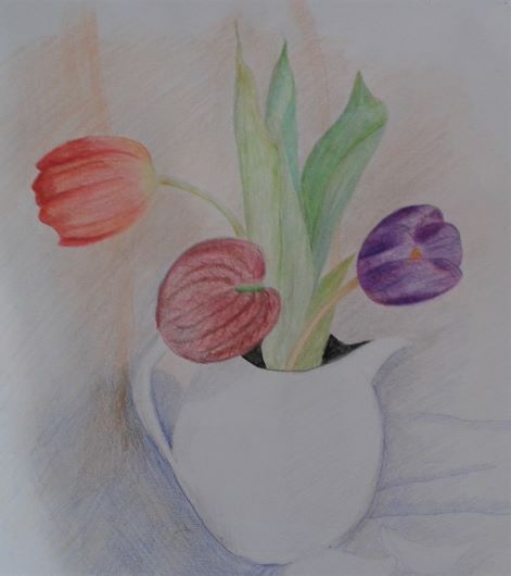 Learn how to use coloured pencils at Raya_s classes